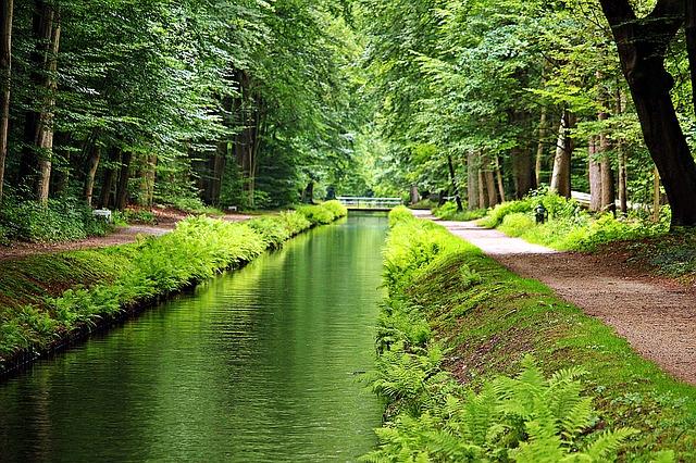 park s potokem