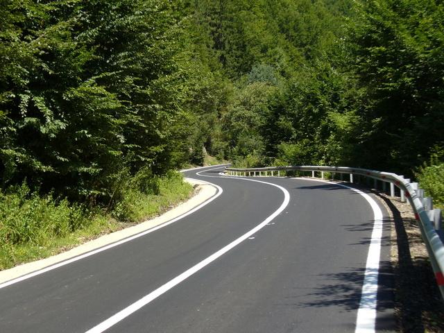 silnice v přírodě, plná čára je to z kopce, kolem jsou stromy