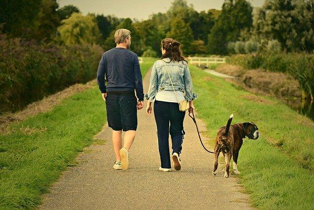 procházka v přírodě je ta nejzdravější